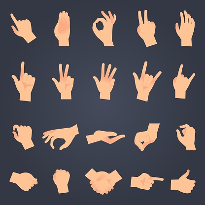 Hand position set. female or male hands holding gesture opening somethin and touching pose vector isolated objects