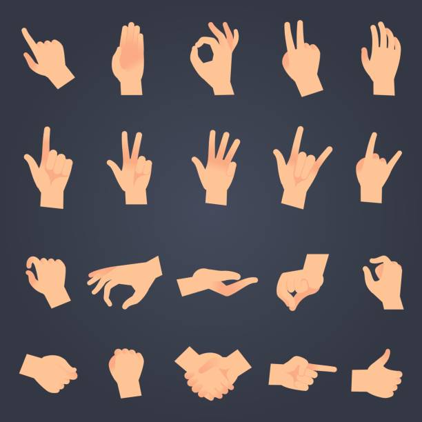 ilustrações de stock, clip art, desenhos animados e ícones de hand position set. female or male hands holding gesture opening somethin and touching pose vector isolated objects - pousar