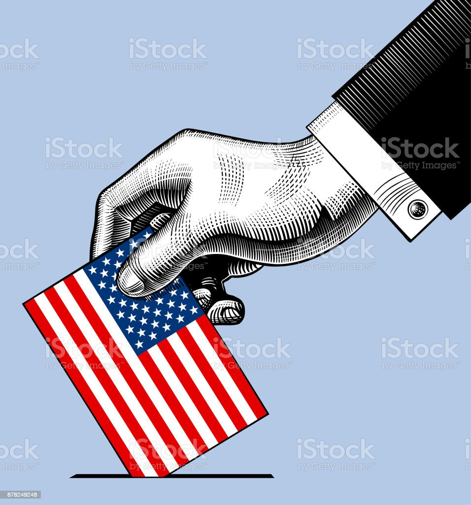 Hand putting voting paper with the USA flag vector art illustration