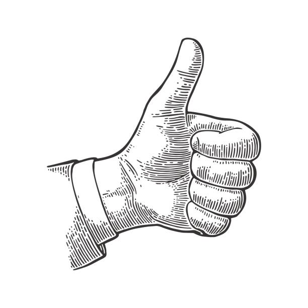 Hand showing symbol Like. Making thumb up gesture. Hand showing symbol Like. Making thumb up gesture. Vector black vintage engraved illustration isolated on white background. Sign for web, poster, info graphic etching stock illustrations