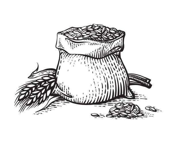 ilustrações de stock, clip art, desenhos animados e ícones de hand sketched whole bag of wheat flour and grains isolated on white background. - ilustrações de oats