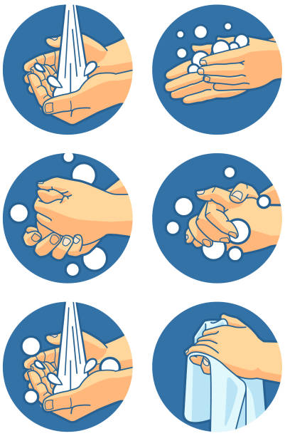 Hand Washing Instructions 6 steps to prevent the spread of germs hand washing instructions. unhygienic stock illustrations