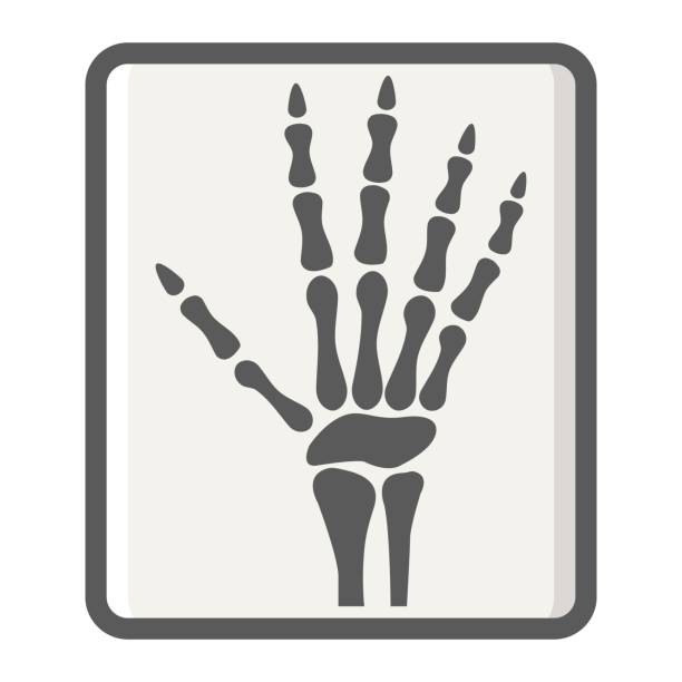 X Ray Line Drawing : Royalty free radiology technician clip art vector images