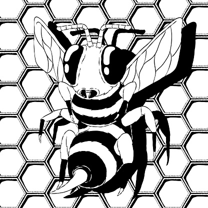 Hand-drawn black and white vector sketch - Bee on honeycomb background.