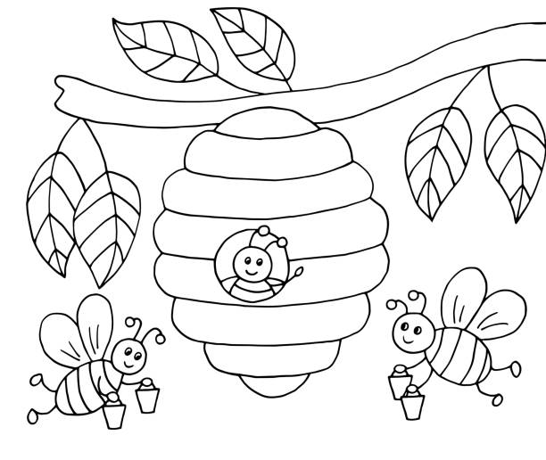 49 Bee Coloring Pages Pictures Illustrations Clip Art Istock
