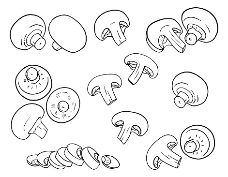 Hand-drawn champignons. Mushrooms in outline style are isolated on a white background. Whole, cut, slices, halves. Black and white vector illustration for food packaging design.
