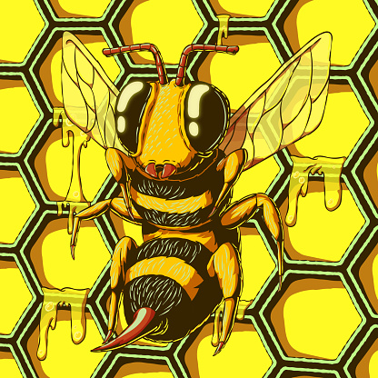 Hand-drawn colorful vector illustration - Bee on honeycomb background.
