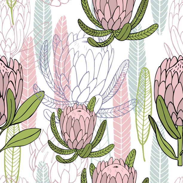 Hand-drawn flowers protea.  Vector pattern Hand-drawn flowers protea.  Vector  seamless pattern south africa stock illustrations