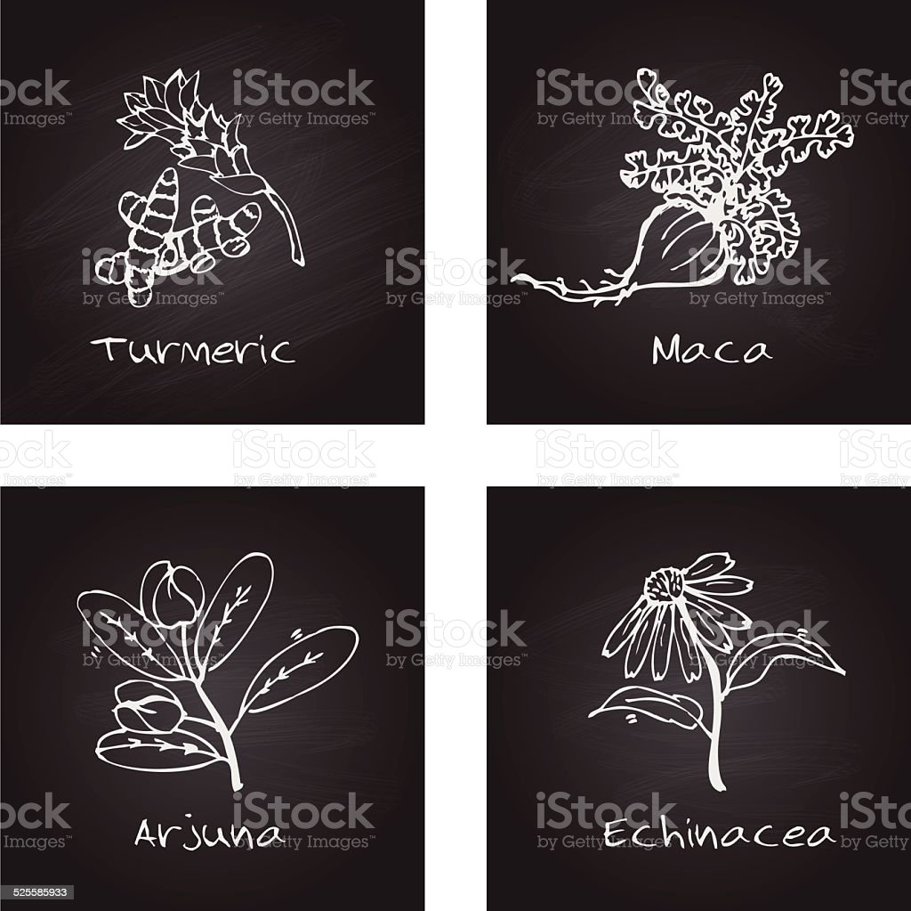 Handdrawn Illustration - Health and Nature Set vector art illustration