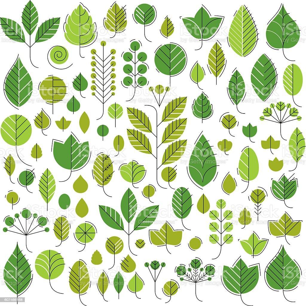 Hand-drawn illustration of simple tree leaves isolated. Green foleage vector art illustration
