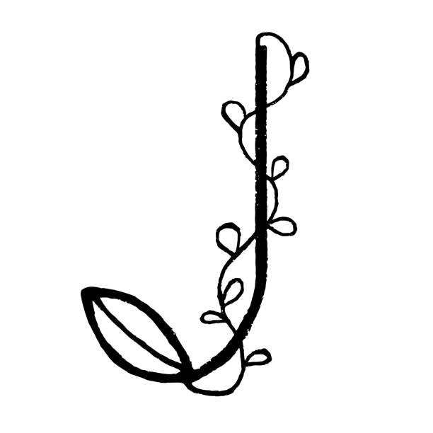 Royalty Free Letter J Wallpaper Clip Art Vector Images