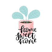 Home sweet home - lettering with plant in pot isolated on white background. Vector illustration.