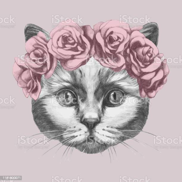 Handdrawn portrait of cat with roses vector id1181800071?b=1&k=6&m=1181800071&s=612x612&h=pgc50xsqmildljs4e ldvvmdopq8ac7xlpokyxtfhak=