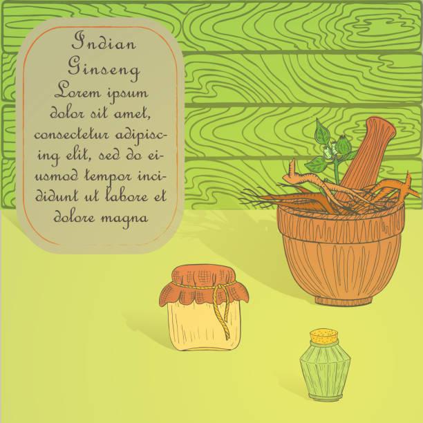 handgezeichnetes set für trank machen mit indischen ginseng - schlafbeere stock-grafiken, -clipart, -cartoons und -symbole