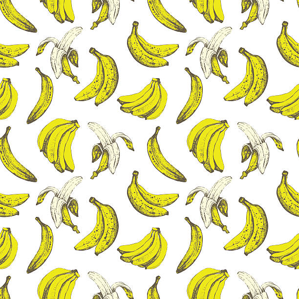 Hand-drawn sketch of banana. Seamless nature background. Fresh organic food.  Banana yellow background. Sketch style. banana stock illustrations