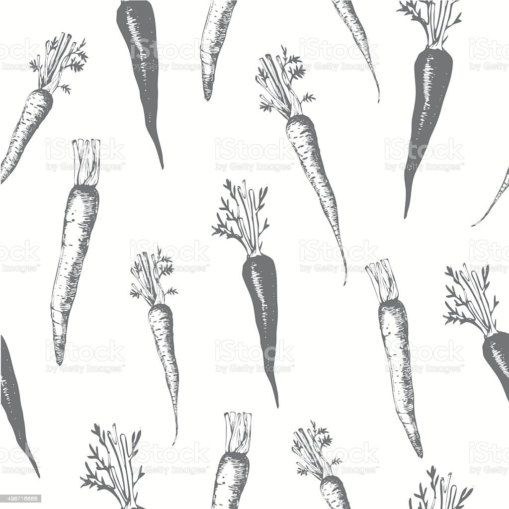 Hand-drawn sketch of carrots. Seamless nature background. vector art illustration