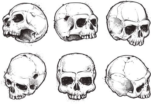 Dibujados a mano cráneo