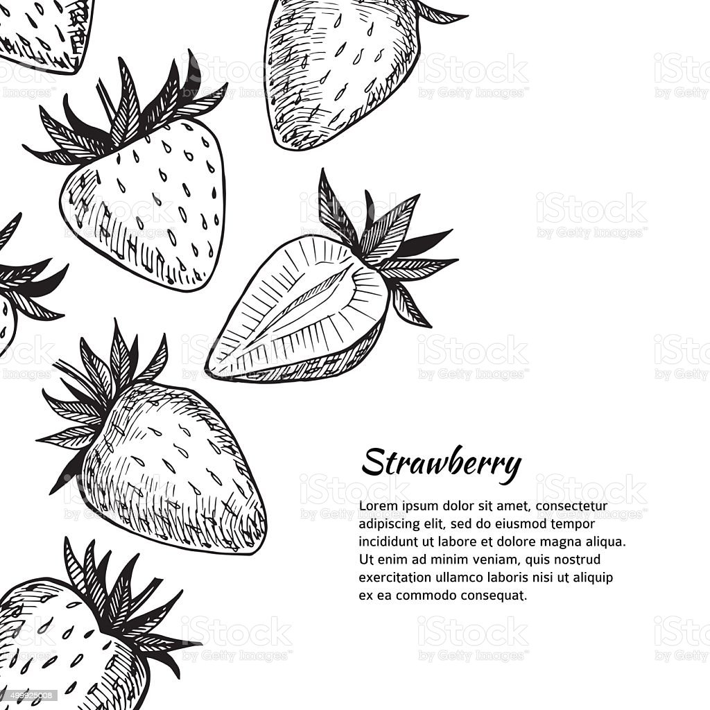 Hand-drawn vector illustration. Card or banner with strawberry. vector art illustration