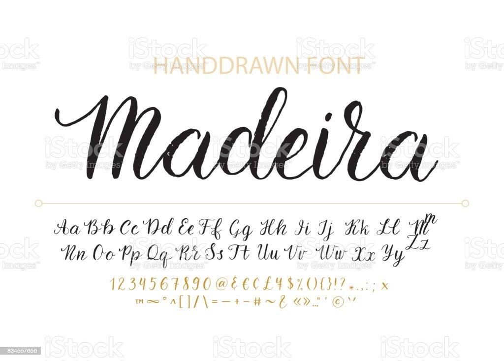 Handdrawn vektör komut dosyası yazı tipi.  Fırça dokulu stil hat cursive typefac vektör sanat illüstrasyonu