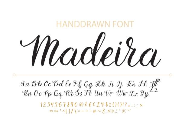 handdrawn vector script font.  brush style textured calligraphy cursive typefac - alphabet drawings stock illustrations