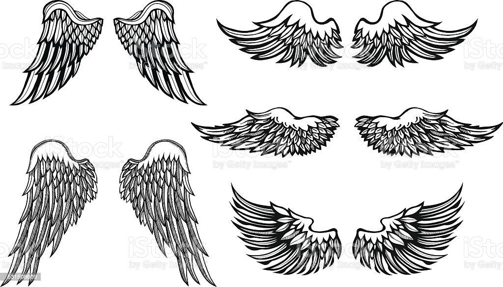 Hand-drawn Wings, vector set vector art illustration
