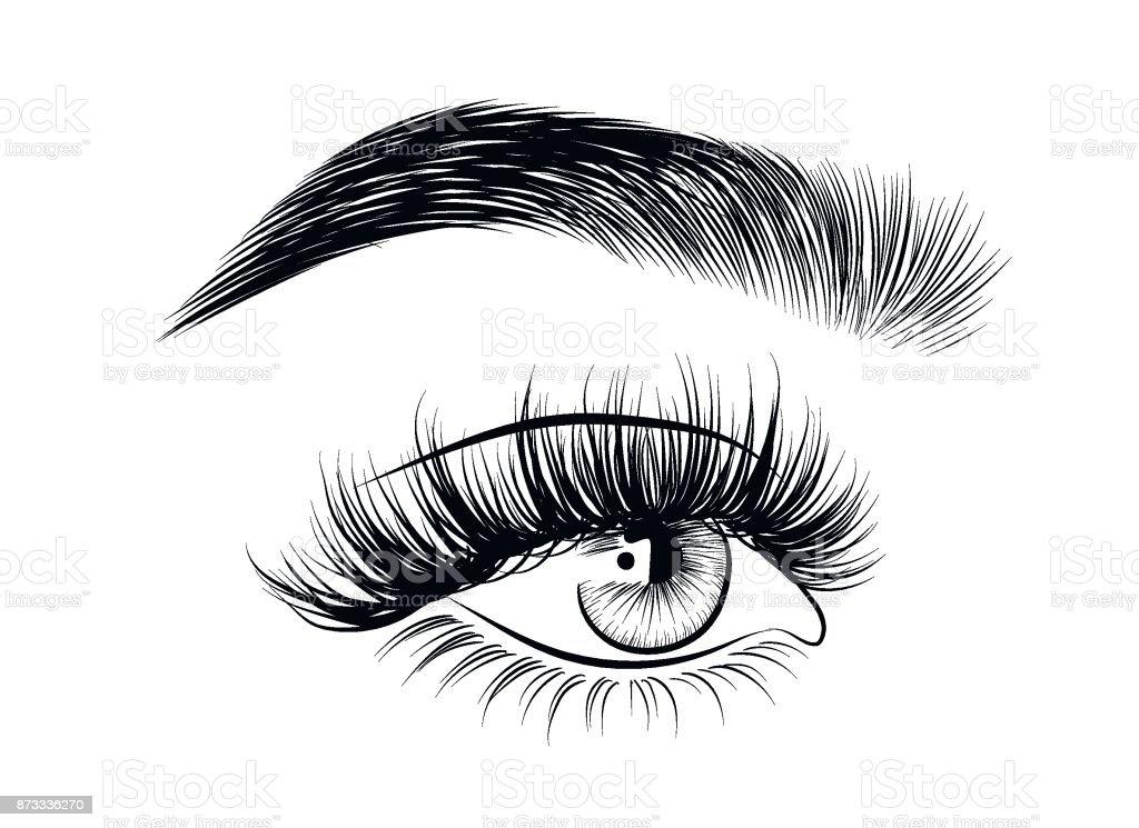 Gezeichnete Frau Wimpern sexy Luxus mit perfekt geformte Augenbrauen und. – Vektorgrafik