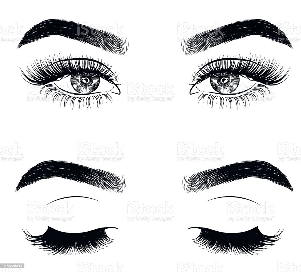 Hand-drawn woman's sexy luxurious eye with perfectly shaped eyebrows and full lashes. vector art illustration