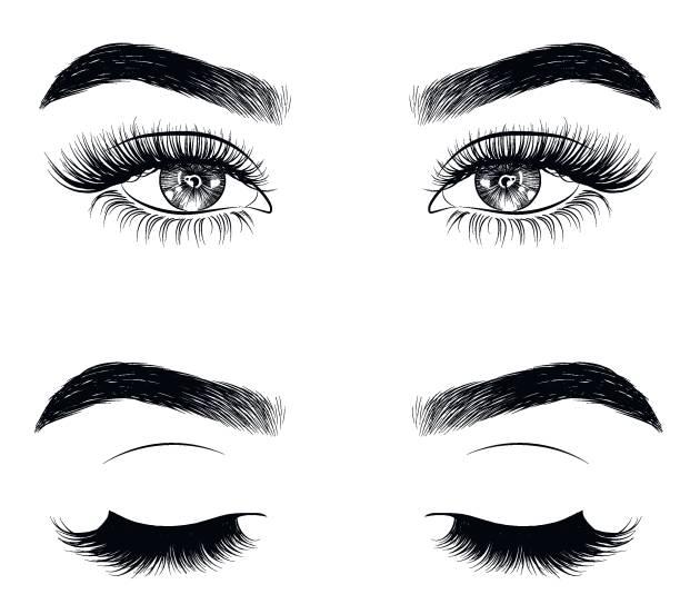 手繪女人的性感豪華的眼睛與完美的形狀的眉毛和全睫毛。 - 睫毛 幅插畫檔、美工圖案、卡通及圖標