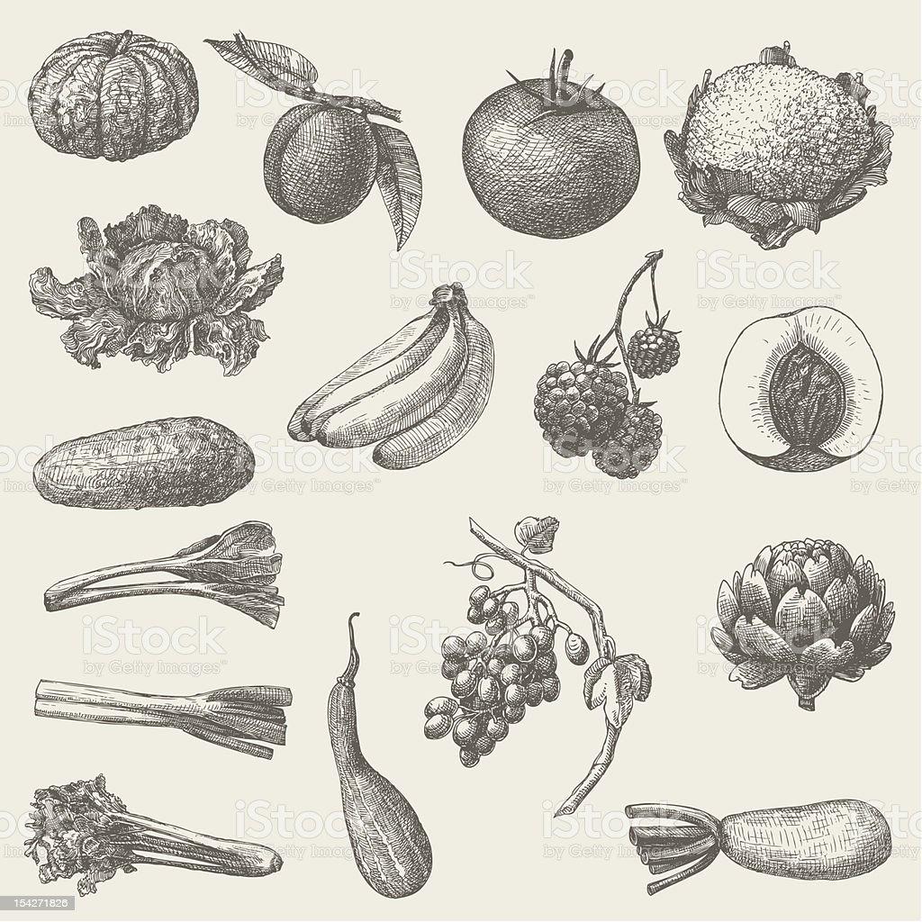 handmade work - set fruits and vegetables vector art illustration