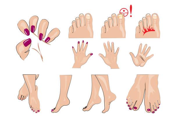 ilustrações de stock, clip art, desenhos animados e ícones de hands, feet and nails manicure, healthy nails and nail fungus - feet hand