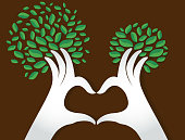 hands heart shape with leaves , nature lovers , World Environment Day