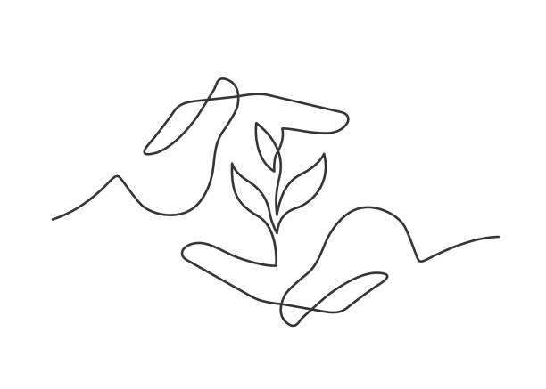 hands herb one line Continuous line drawing of growing plant between two  human hands meaning care and love. Vector illustration contour drawing stock illustrations