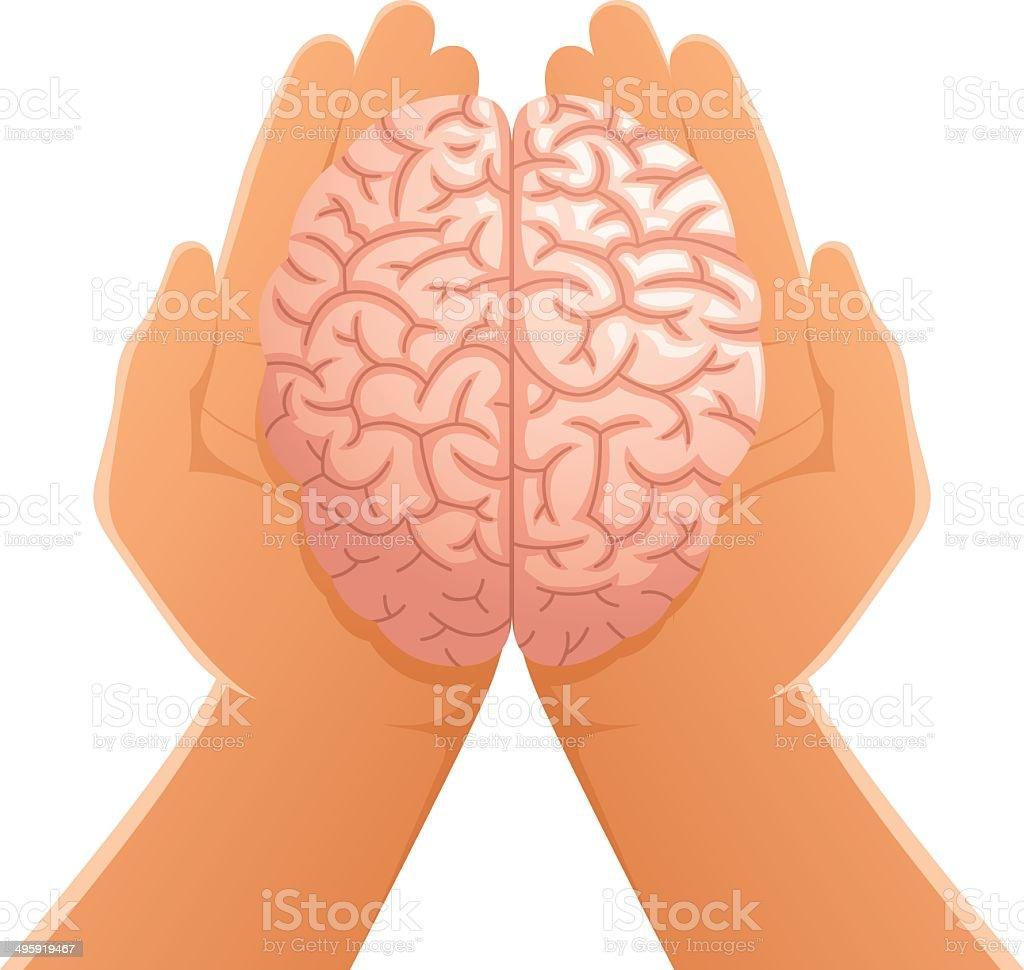 Hands Holding Brain royalty-free stock vector art
