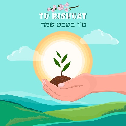 Hands holding growth Plant on green field landscape background. Tu Bishvat in Hebrew