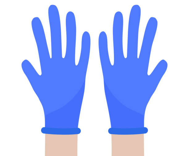 Hands in protective gloves. Latex gloves against viruses and bacteria, vector illustration vector art illustration