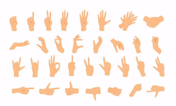 stockillustraties, clipart, cartoons en iconen met handen in verschillende gebaren. flat design moderne vector illustratie concept. - wijzen handgebaar