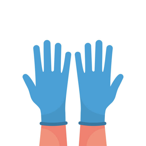 Hands putting on protective blue gloves vector Hands putting on protective blue gloves. Latex gloves as a symbol of protection against viruses and bacteria. Precaution icon. Vector illustration flat design. Isolated on white background. protective glove stock illustrations