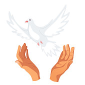 Hands releasing white dove flat vector illustration
