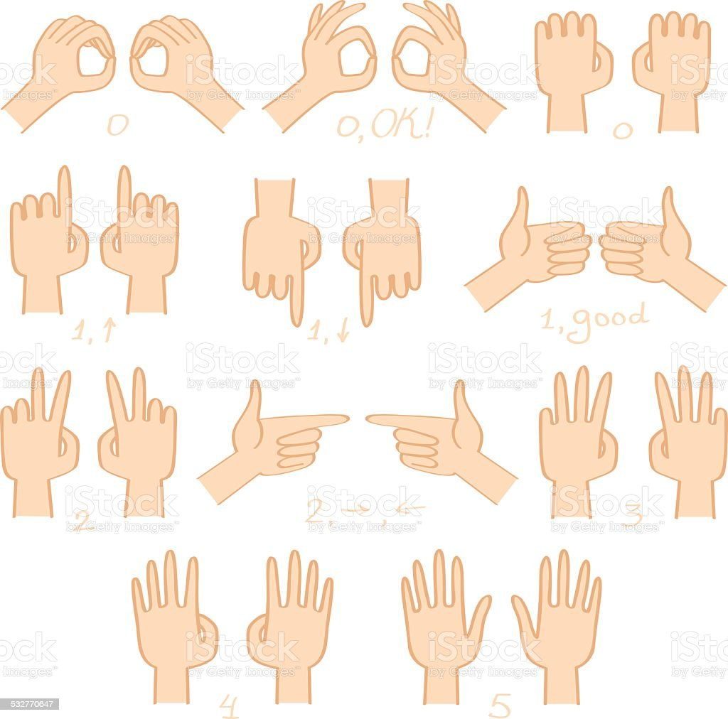 Hands  show numbers and directions vector set vector art illustration