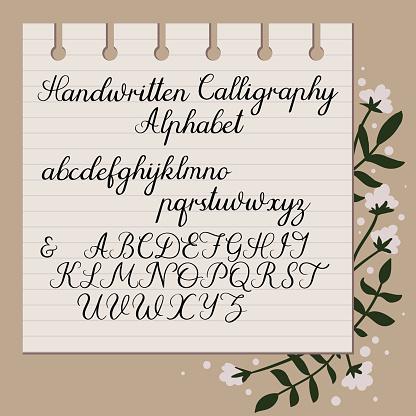 Handwritten Alphabet Modern Calligraphy Uppercase Lowercase