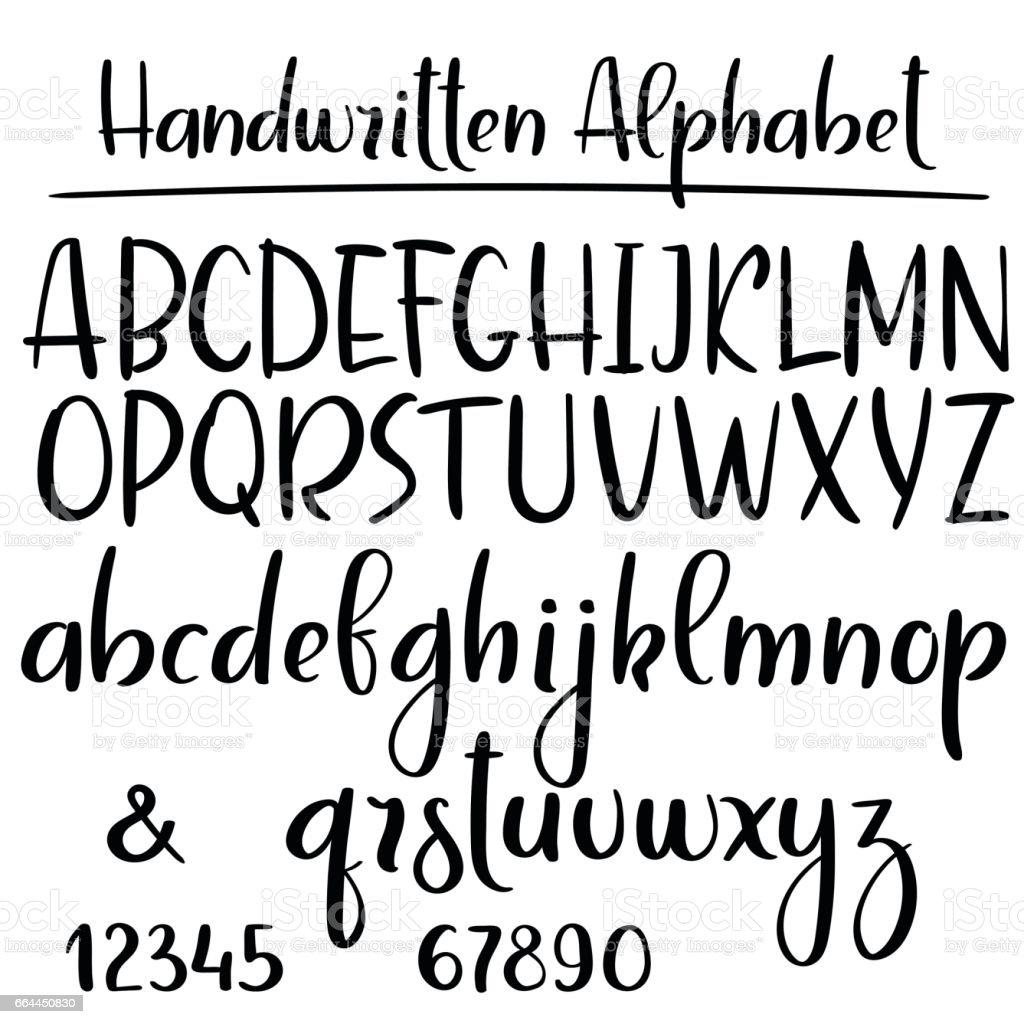 Aphabet manuscrite. Polices vectorielles calligraphie moderne - Illustration vectorielle
