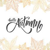Vector illustration: Handwritten brush lettering of Hello Autumn on hand drawn leaves background. Outline sketch design