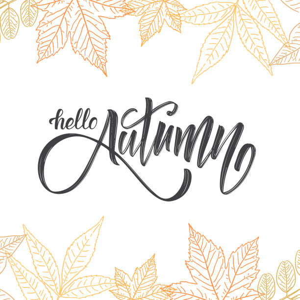 handwritten brush lettering of hello autumn on hand drawn leaves background. outline sketch design - autumn stock illustrations
