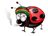 Happy amaican Lady Bug cartoon . Vetcor Illustration