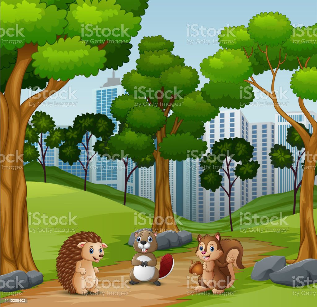 Happy animals playing in the forest