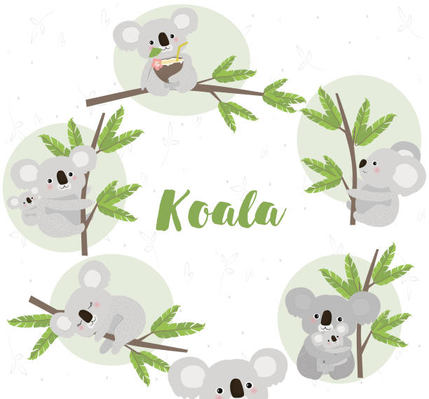 happy birthday card with fun koala bears - koala stock illustrations