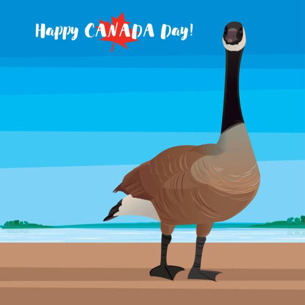 Happy Canada Day! vector art illustration