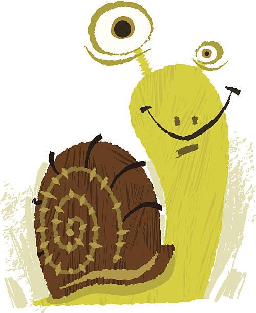happy vierbeiner der schnecke auswahl - lustige schnecken stock-grafiken, -clipart, -cartoons und -symbole
