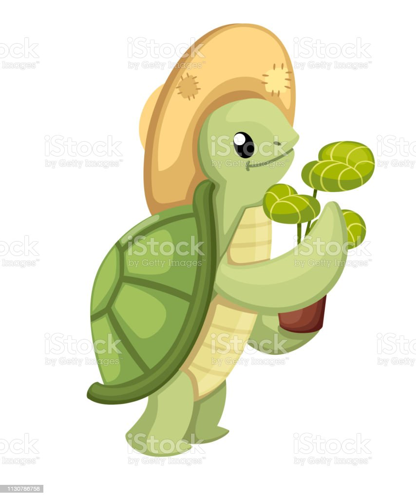 Happy Cute Turtle Walking With Smile Little Turtle With Flower Pot
