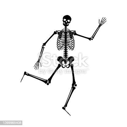 istock Happy dancing skeletons on Halloween 1269965408